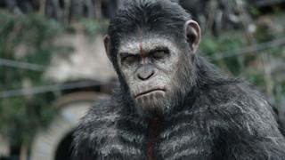 Cốt truyện của bộ phim Planet of the Apes tiếp theo cực kì khốc liệt