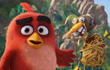 Phần tiếp theo của Angry Birds sẽ ra rạp năm 2019, 10 năm sau khi game ra đời
