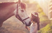 Tổng hợp những hình ảnh đẹp tuyệt vời về tình bạn với các loài động vật