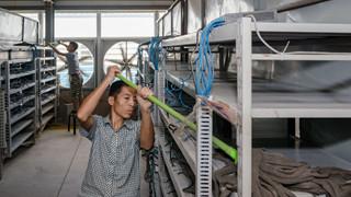 """Cuộc sống của những """"thợ mỏ"""" tại mỏ đào bitcoin lớn nhất thế giới, mỗi ngày kiếm hơn 6 tỷ trả tiền điện gần 900 triệu"""