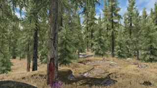 Khi Modder nước ngoài ghép cây thật vào trong Skyrim và cho ra kết quả vô cùng ấn tượng