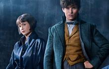 """""""Fantastic Beasts 2"""" công bố tựa chính thức cùng tạo hình Dumbledore thời trẻ"""