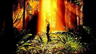 Shadow of the Colossus Remake sẽ cho phép người chơi chụp lại ảnh đẹp