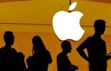 Thanh niên 16 tuổi tấn công máy chủ của Apple chỉ vì...muốn được làm việc tại nơi đây