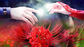Âm Dương Sư: Truyền Thuyết Hoa Bỉ Ngạn - mối tình đau đớn mãi không thoát được