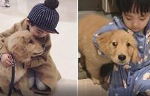 """Gặp gỡ tình bạn """"vàng"""" của cậu bé Hàn Quốc và thú cưng của mình"""