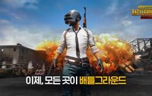PUBG Mobile Hàn Quốc: Hướng dẫn cài đặt và tải PUBG Mobile Hàn Quốc