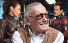 """Fan Stan Lee đừng quá đau buồn bởi ít nhất """"Bố già"""" vẫn xuất hiện ở Avengers 4!"""