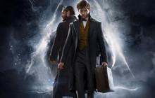 Review phim Fantastic Beasts 2: Sẽ là tội ác nếu Fan Harry Potter không xem qua [No Spoilers]
