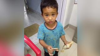 Bé trai Ấn Độ đưa gà đi cấp cứu được tặng giấy khen