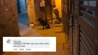 """Thanh niên bị chú chó bắt nạt suốt 4 năm: Muốn về nhà phải """"nộp thuế"""" đường bộ"""