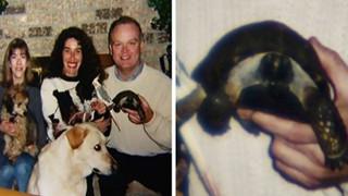 Tình bạn cảm động suốt 57 năm đằng đẵng của người phụ nữ và thú cưng đặc biệt - một cụ rùa