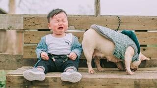 """Cậu nhóc khóc ré """"ăn vạ"""" khi phải chụp ảnh bên bạn chó: Dễ thương quá mức quy định rồi nhé!"""