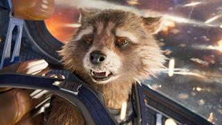 Câu chuyện của Rocket Racoon sẽ kết thúc trong Guardians of the Galaxy Vol. 3