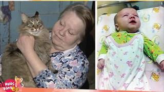 Chú mèo béo ú này đã dùng mỡ và lông của mình để sưởi ấm cứu sống 1 bé trai bị bỏ rơi giữa mùa đông lạnh giá