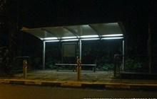 Truyện ma Weibo - Chuyến xe Bus số 14 - Phần 14 - Nửa chiếc lưỡi
