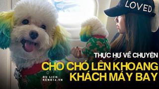 """Dân mạng chia phe tranh cãi """"nảy lửa"""" với câu chuyện mang thú cưng lên máy bay của cô bạn đến từ Sài Gòn"""