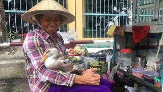 CLIP: Kỳ lạ con vịt biết làm nũng, biết phân biệt lạ, quen ở Phú Nhuận