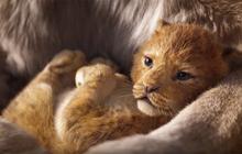 Vua Sư Tử thống trị phòng vé, phá vỡ kỉ lục phim live-action của chính Disney