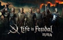 Game sinh tồn thế giới mở Life is Feudal: MMO có giá 400.000 VND nhưng giờ đây đã cho chơi miễn phí