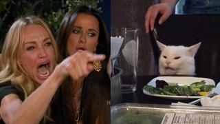 Tổng hợp Meme 2 cô gái la con mèo trên bàn ăn là gì và bắt nguồn từ đâu?
