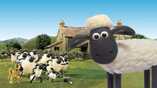 Chú cừu đình đám của màn ảnh và những thành tích lẫy lừng ít ai biết