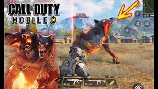 Hướng dẫn tiêu diệt quái vật Cerberus trong Call of Duty Mobile một cách nhanh nhất