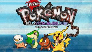 Pokemon và những bí mật đen tối mà không phải ai cũng phát hiện ra được