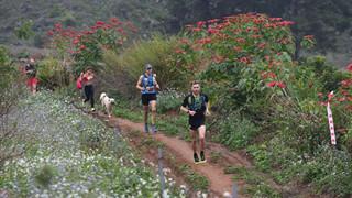 Ham vui, chú cún đuổi theo đoàn chạy Marathon suốt 42 km giành luôn chức vô địch, khiến cho chủ phải hoảng hồn đón về bằng taxi
