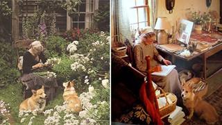 Ngôi nhà cổ tích có thật của bà cụ 92 tuổi khiến ai ai cũng phải trầm trồ, ước mơ