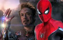 """Hết Black Widow, Iron Man sẽ tiếp tục được """"hồi sinh"""" trong phần phim mới của Spider-Man?"""