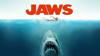 [Shock] Nữ diễn viên phim Hàm cá mập đột ngột qua đời vì mắc Covid-19