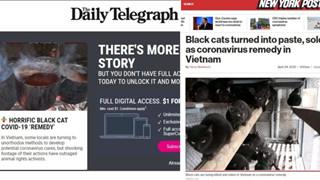 Báo phương Tây tung tin giả Việt Nam ăn mèo đen để chữa Covid
