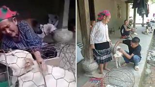 Bà cụ vùng cao khóc nức nở khi bán chó vì không có tiền, người hảo tâm đã giúp bà đoàn tụ lại chú chó: Bà sẽ không bán nó nữa đâu