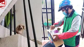 Đi giao hàng, anh shipper chợt tìm thấy thú cưng sau 5 năm thất lạc