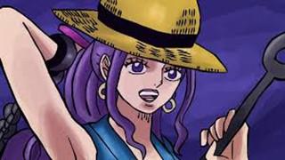 One Piece Magazine Volume 10 xác nhận rằng băng Mũ Rơm sẽ còn một thành viên khác sau Jinbe