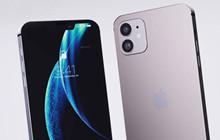 Rò rỉ: iPhone 12 có dung lượng cơ bản 64GB và iPhone 12 Pro là 128GB