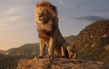 Phần hai The Lion King live-action chính thức khởi động