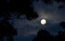 Trăng Sương giá là gì ? Nguyệt Thực nửa tối là gì ? Những hiện tượng này có gì lạ trong ngày 30 tháng 11 tới đây