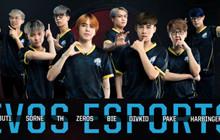 EVOS Esports đang bước trên đà giải thể, chuẩn bị rút khỏi thị trường Esports tại Việt Nam?