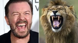 Tài tử Anh gây sốc với tuyên bố muốn được 'trở thành mồi cho sư tử' sau khi chết