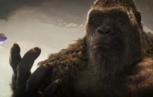 Godzilla vs. Kong: Những điều có thể bạn chưa biết (P2)