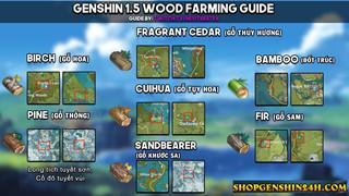 Genshin Impact: Hướng dẫn cách thu thập các loại gỗ nhanh chóng nhất tại phiên bản 1.5