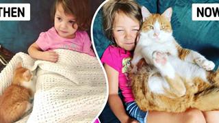 20 hình ảnh các bé chó mèo từ khi còn bé và lớn lên nhờ tình yêu thương của các sen