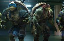 Ninja Rùa sắp sửa có phần tiếp theo