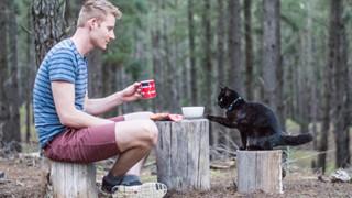 Những dấu hiệu và cách để cho một con mèo yêu quý bạn nhiều hơn