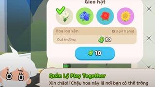 Play Together - Hướng dẫn cách trồng cây để kiếm thêm quà cho người chơi trong bản cập nhật 30 tháng 8