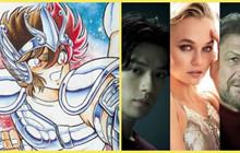 Áo Giáp Vàng - Saint Seiya Knight Of The Zodiac live-action công bố dàn diễn viên 'quốc tế'