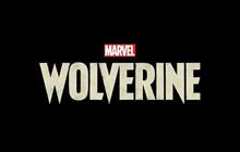 Cốt truyện Marvel's Wolverine được chắp bút bởi tác giả kịch bản Spec Ops The Line